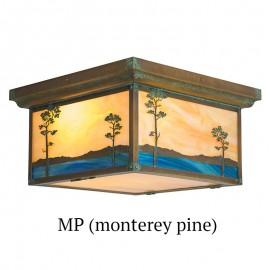 635 - Monterey Pines Drop Ceiling